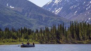 denali rafting Four Hour Scenic Pic